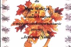 Dyplom M.Molczyk