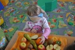 phoca_thumb_l_w owocowej krainie 10