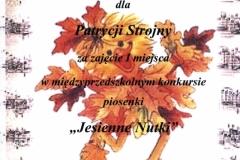 Dyplom P.Strojna
