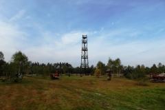 dziki bor 2013-2014 (19)