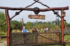 dziki bor 2013-2014 (29)